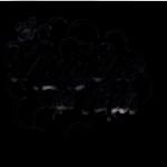 Logo EMDV transparente